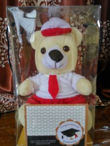 Boneka Wisuda Tk, Boneka wisuda SD, Boneka Wisuda SMP